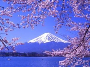 HÀ NỘI – TOKYO – KAWAGUCHI – NÚI PHÚ SĨ – NARA – KYOTO – OSAKA – HÀ NỘI   (6 ngày/ 5 đêm, Bay Hàng Không Thái Lan)